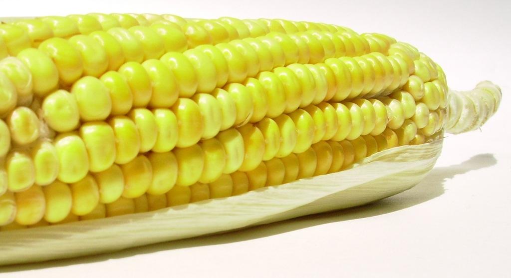 corn-4.jpg