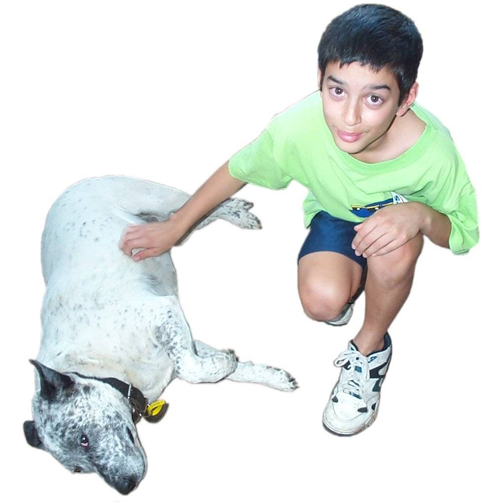 Boy scratching dog.jpg
