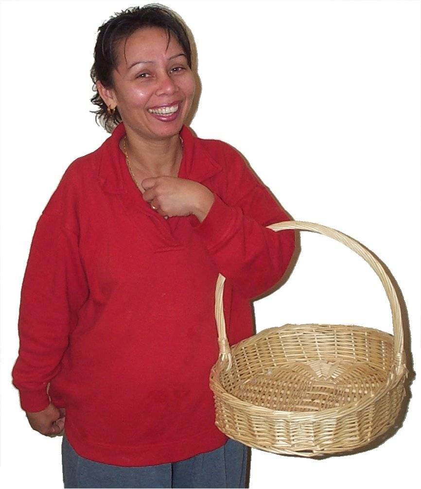 Carrying basket.jpg