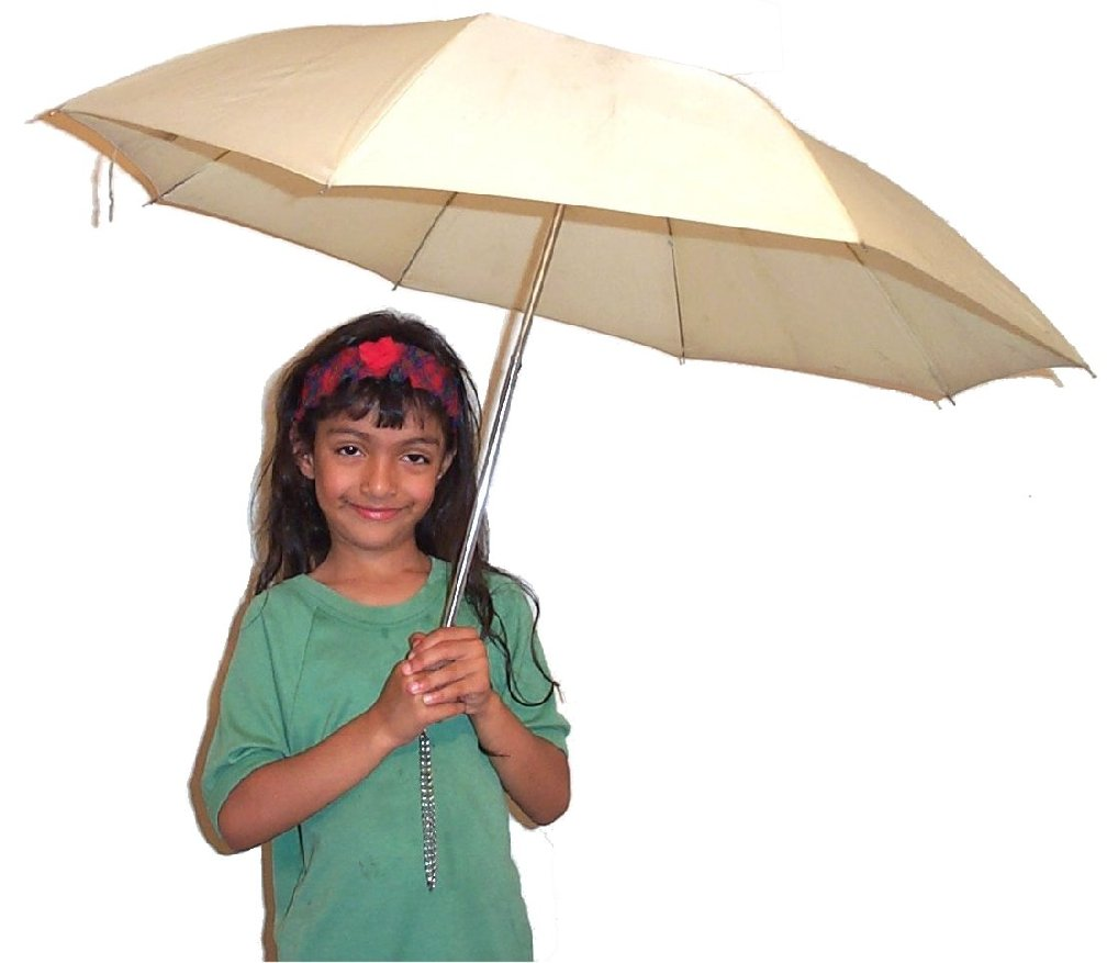Carrying umbrella1.jpg