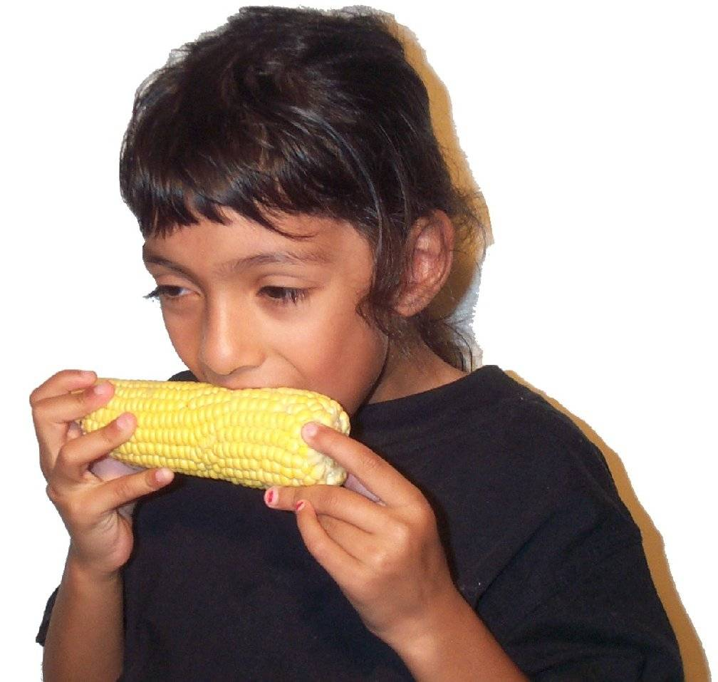 Eating corn1.jpg