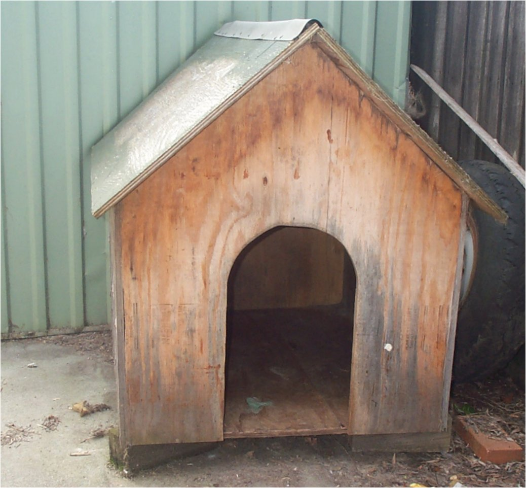 Dog Kennel2.jpg