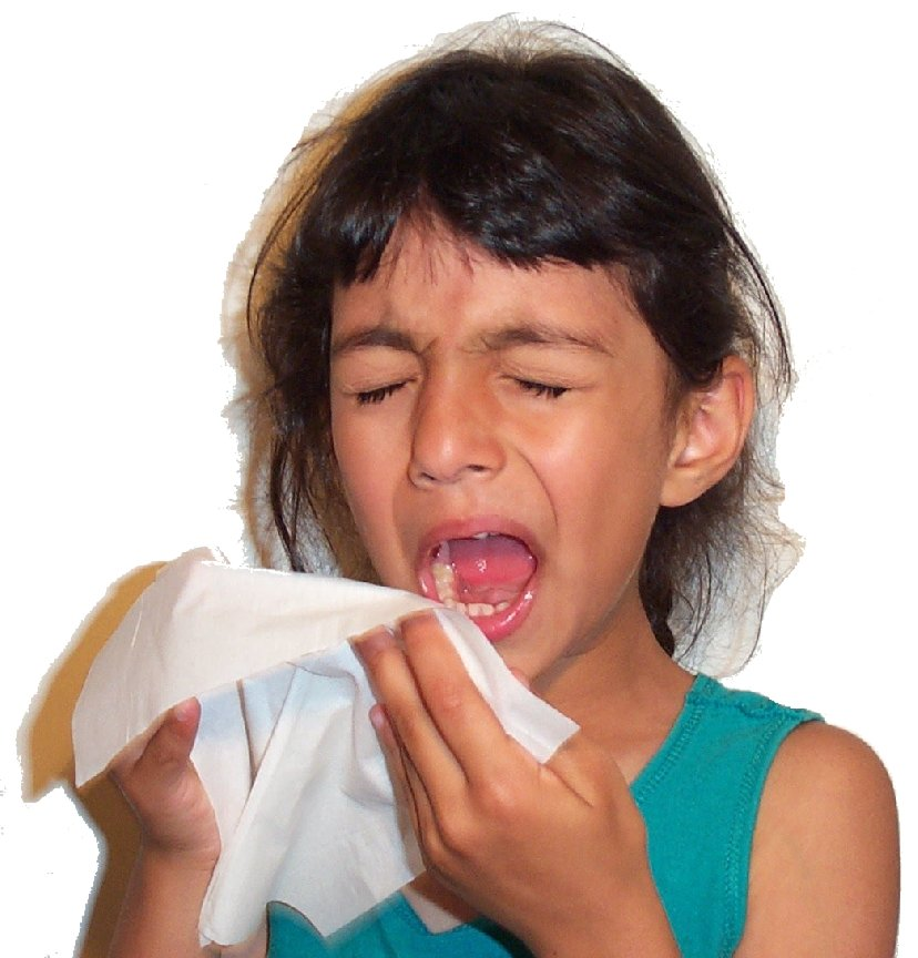 Sneezing and Tissues2.jpg