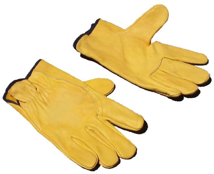 Gloves (Clean).jpg
