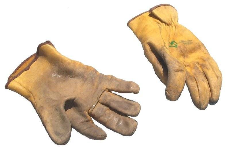 Gloves (Dirty).jpg