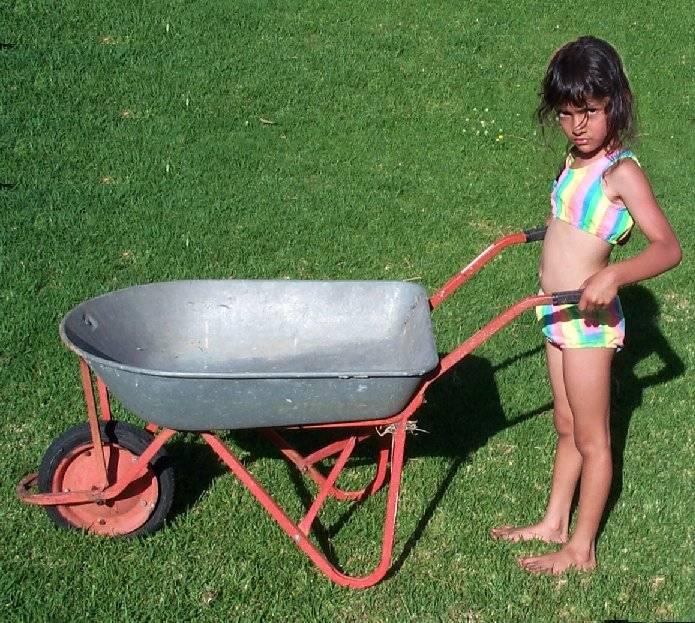 Pushing wheelbarrow (big).jpg