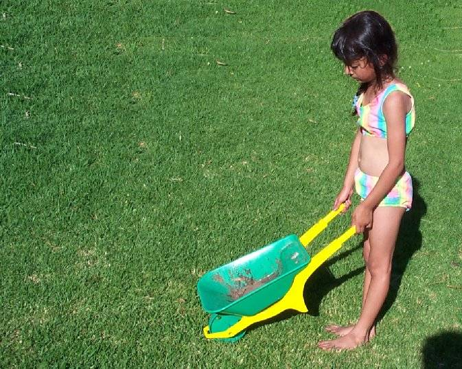 Pushing wheelbarrow (small).jpg