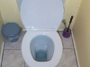 Toilet bowl (open).jpg